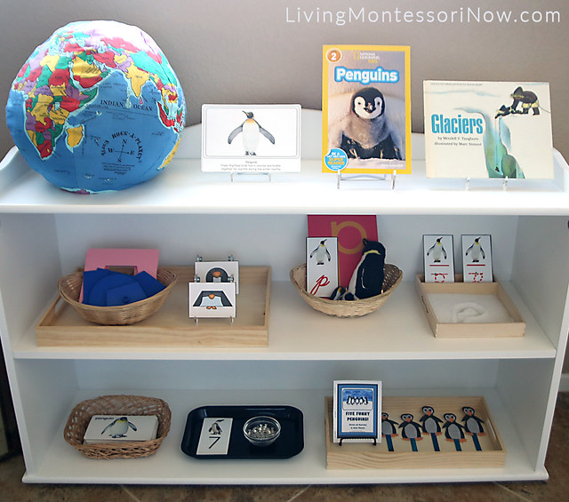 Montessori Preschool Shelves with Penguin Theme