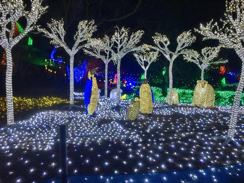 Tokyo Doitsu mura winter illumination 2016-2017 13