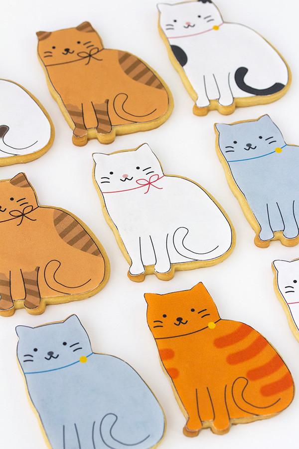 papel de azucar gatos