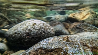 Rocks Underwater | by Infinite Dust
