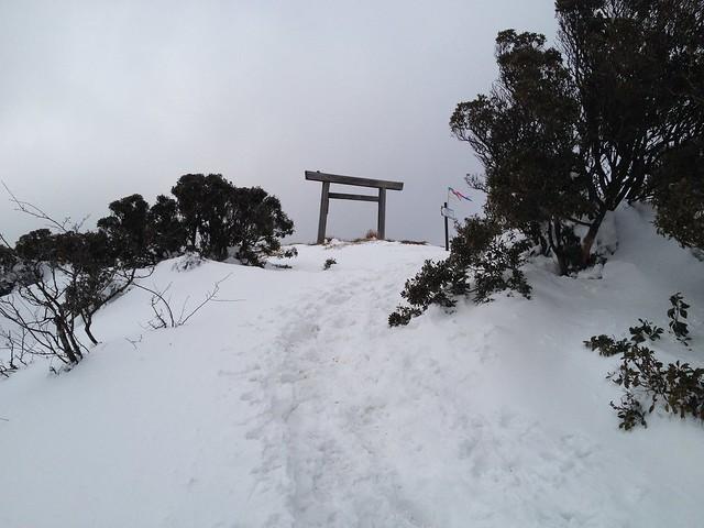 入道ヶ岳 二本松尾根 山頂鳥居