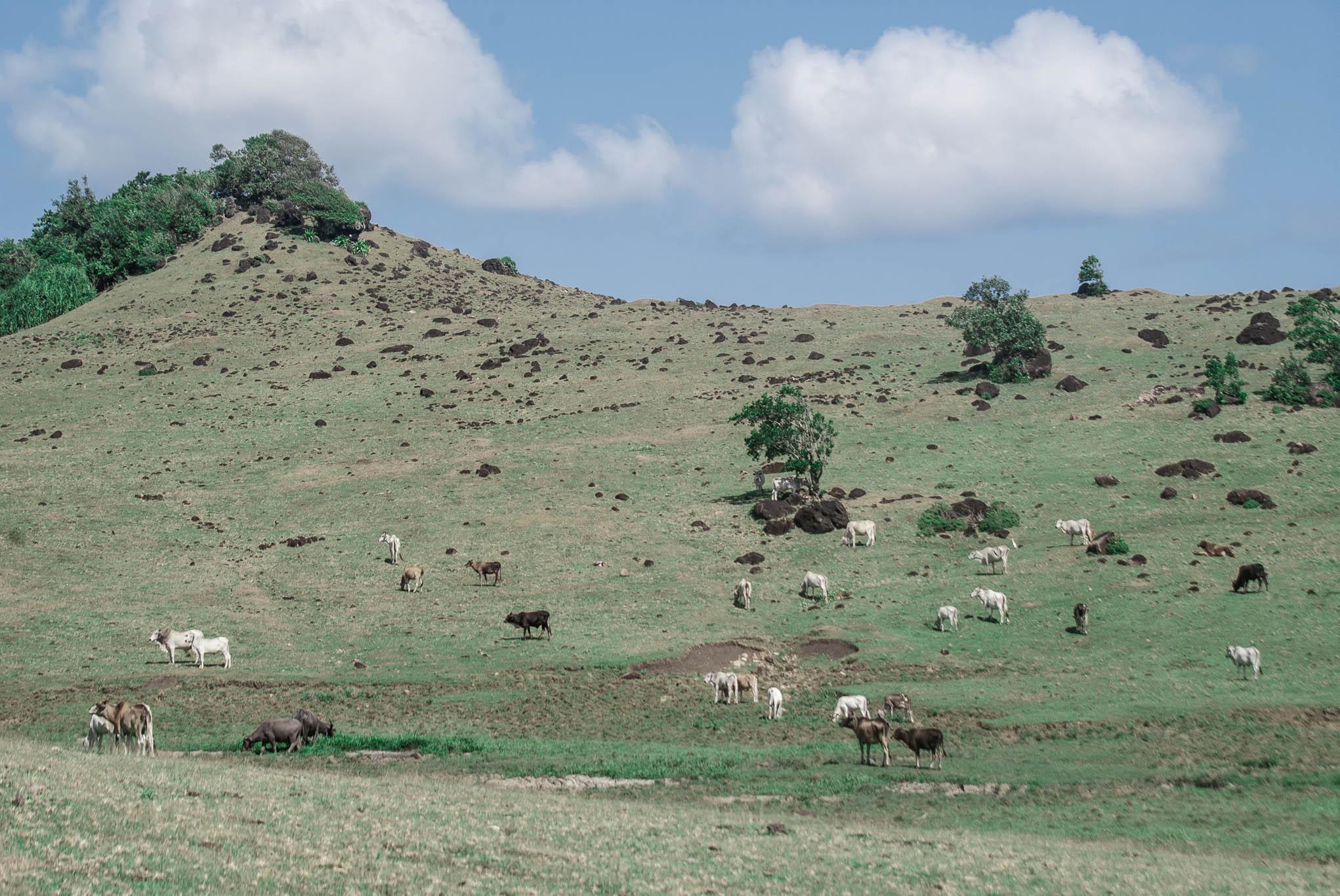 caramoan hill (1 of 1)