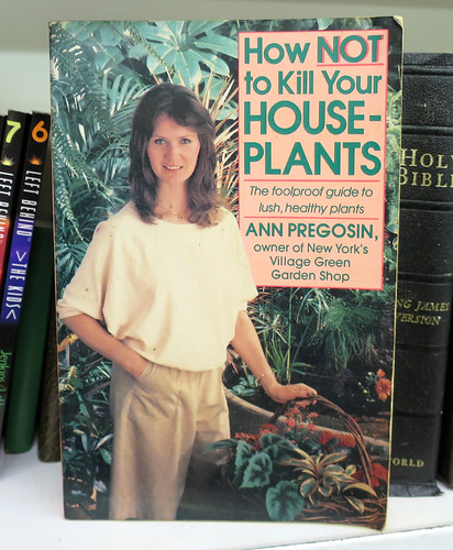 how not to kill houseplants