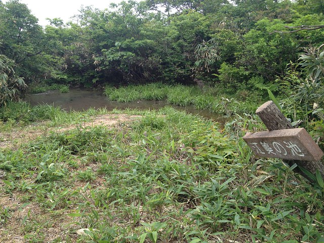 貝月山 長者平ルート 江美の池