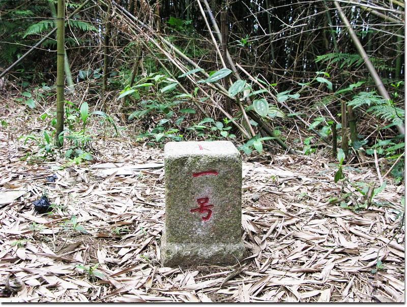 苗栗大湖包樹崠山三等三角點(# 001 Elev. 593 m)