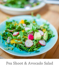 Pea Shoot, Avocado, Radish & Orange Salad with Honey Dressing