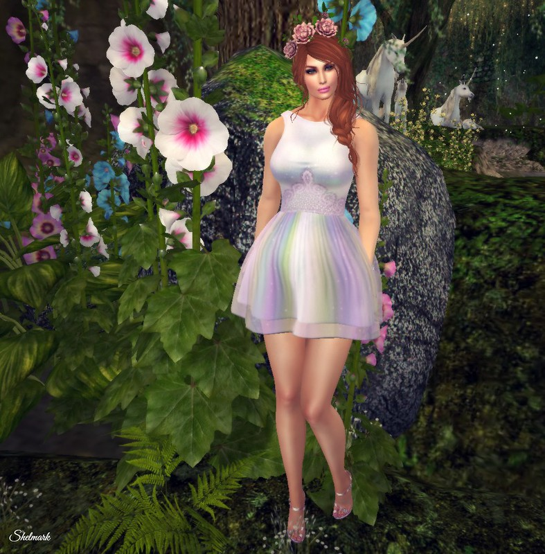 Blog_Enchanted_PetitMort_CinderellaDress_002