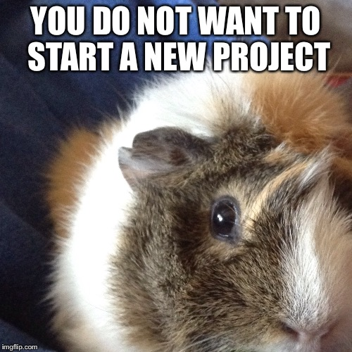 you do not want to start a new project