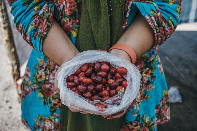 Immigrant Food Stories | Persian Food | Lab Noon by Saghar Setareh00022