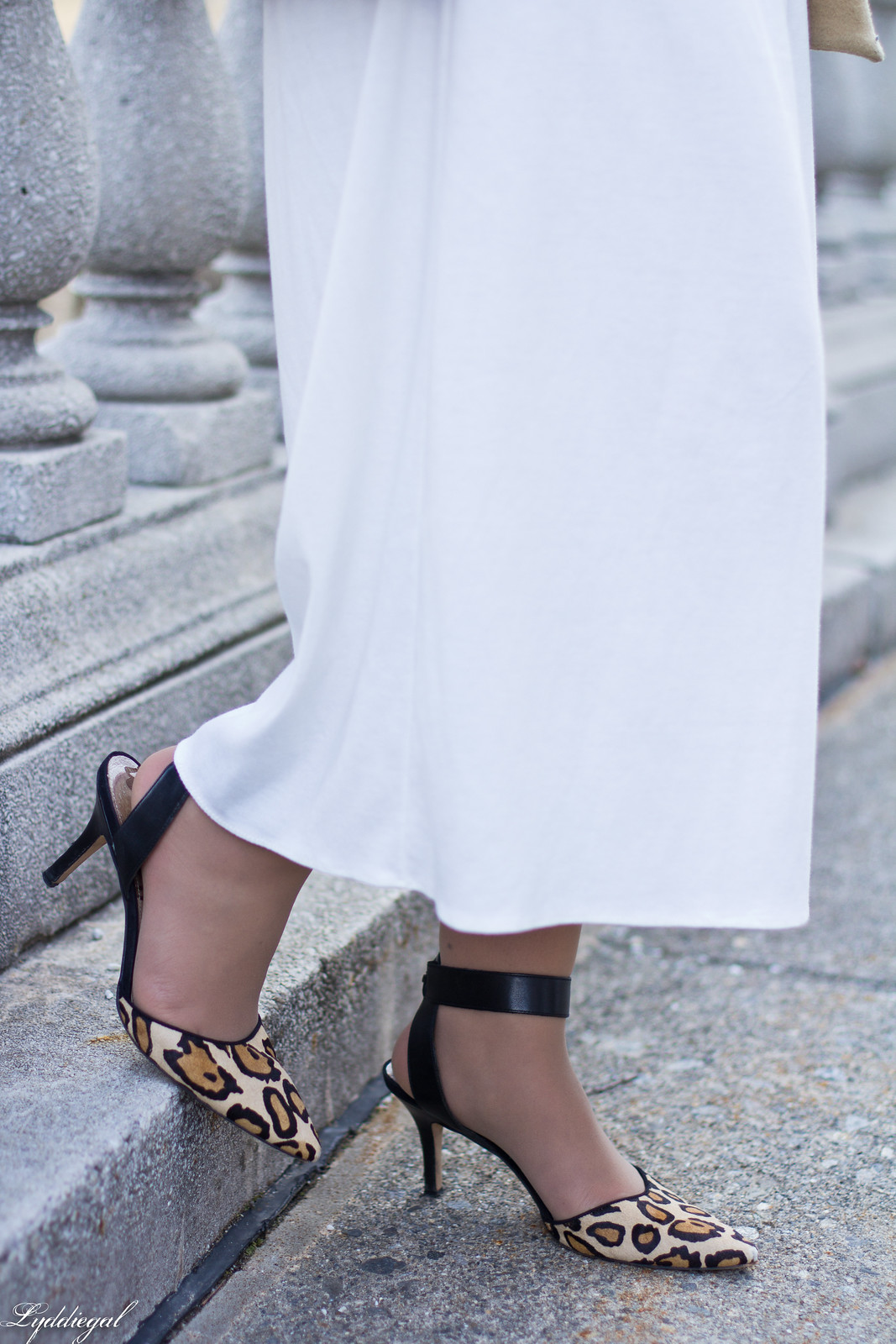 white culottes, black sweater, camel coat, leopard heels, matine clutch-8.jpg
