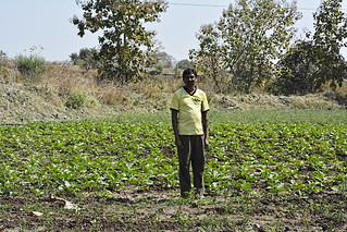 Farmer Sitaram Kove, a beneficiary of the Doha model.