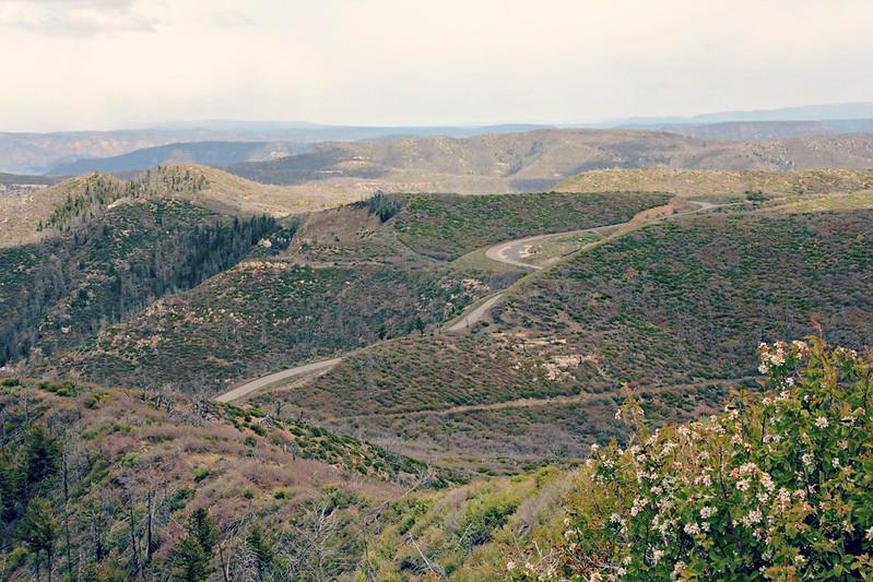Mesa Verde Landscape
