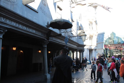Diagon Alley (54)