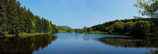 Little Long Pond  6-7-15