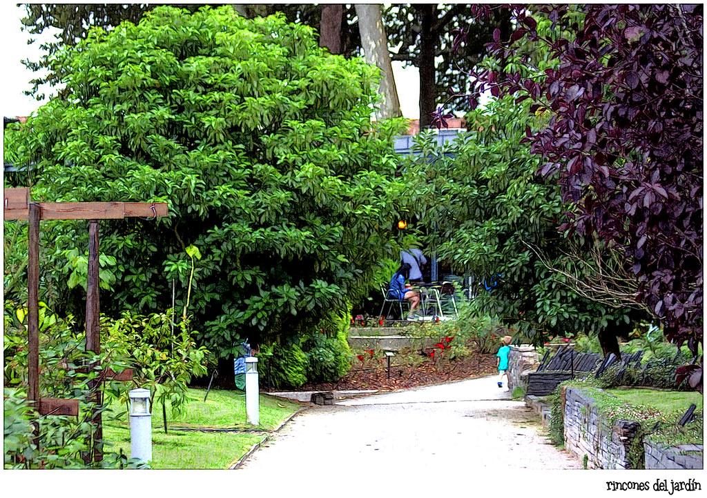 rincones del jardín botánico atlántico de Gijón