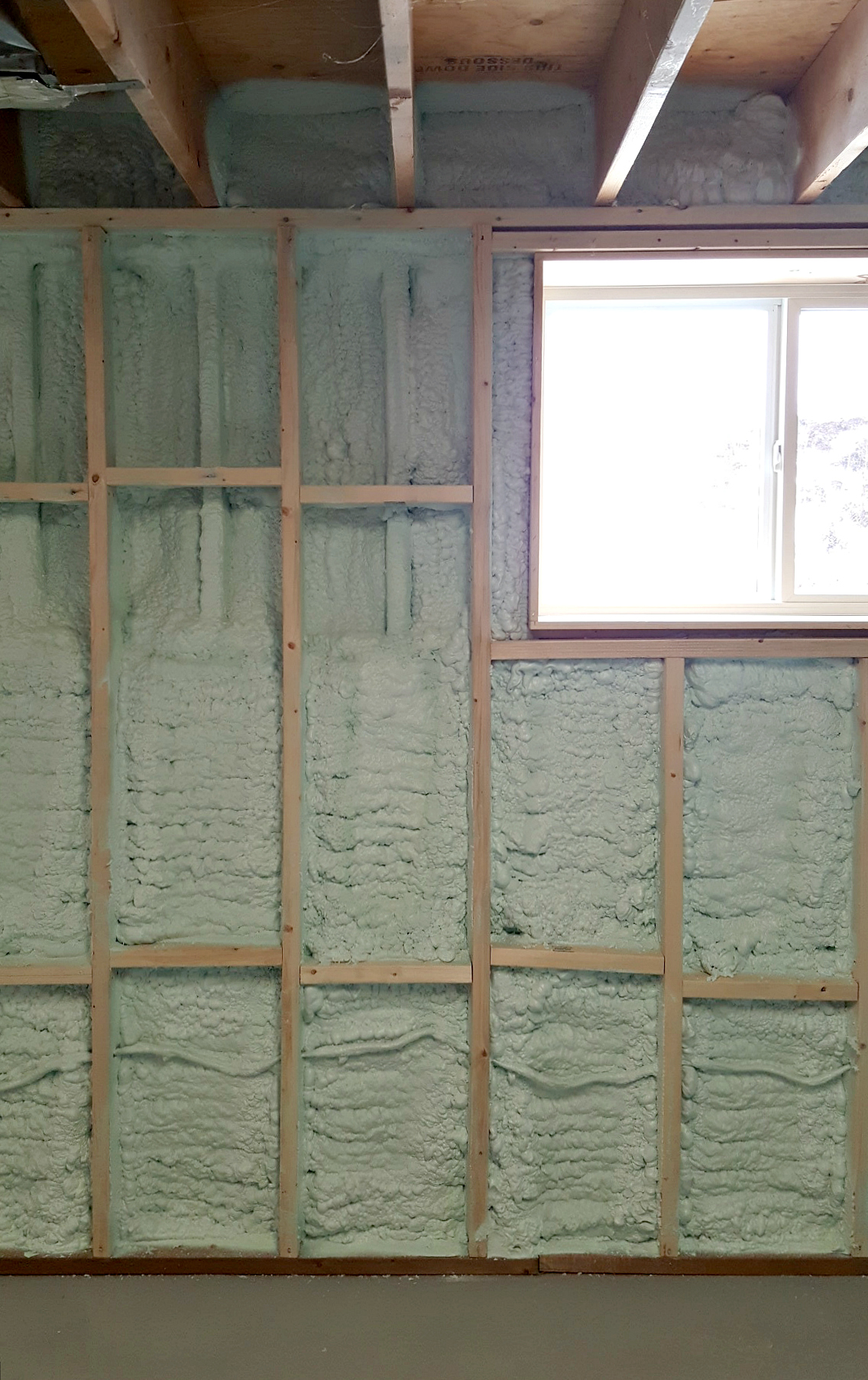 Turtles And Tails Basement Wall Framing Amp Insulating