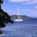 bb8507_018, Bora Bora, French Polynesia