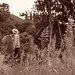 Naenae Polepine Grass