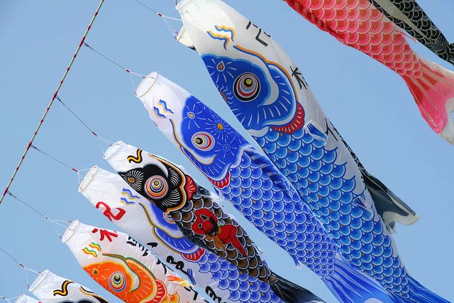 Carp streamers taken at sagami river kanagawa japan for Japanese fish flag