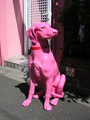 A pink dog in front of a pink gate | by tanakawho