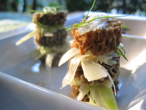 morel_mushroom_and_fennel_stack | by tofu666