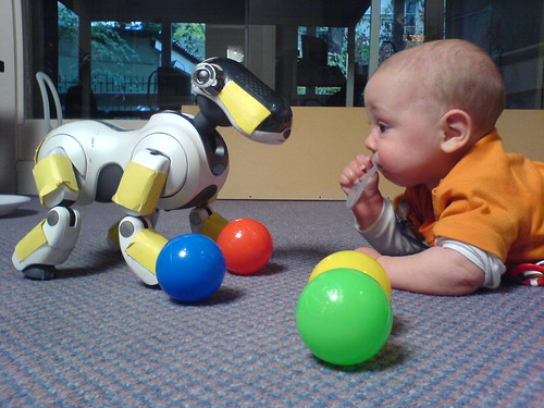 A seven month old infant interacting with an Aibo | by martin loetzsch