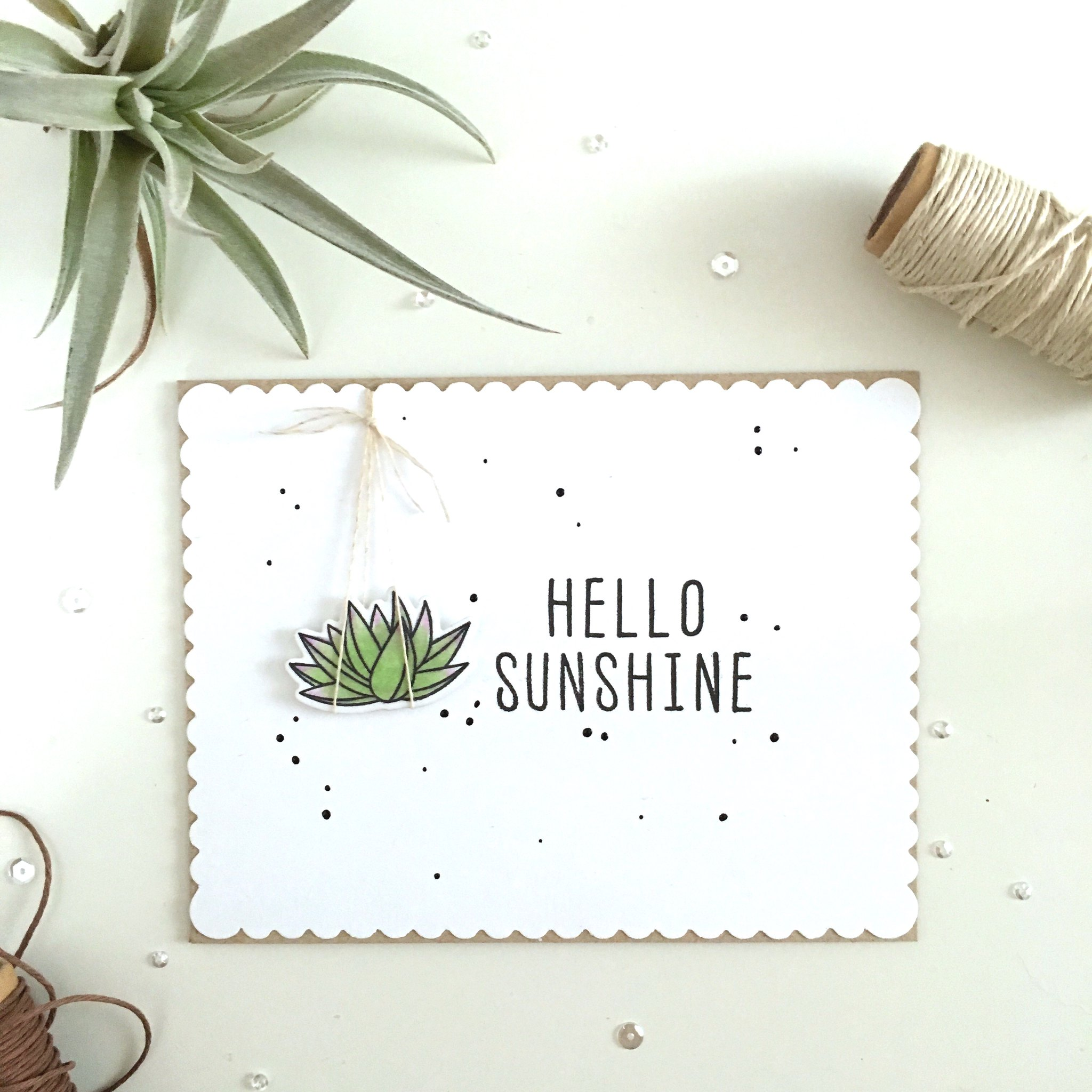 Hello Sunshine mft sweet succulents