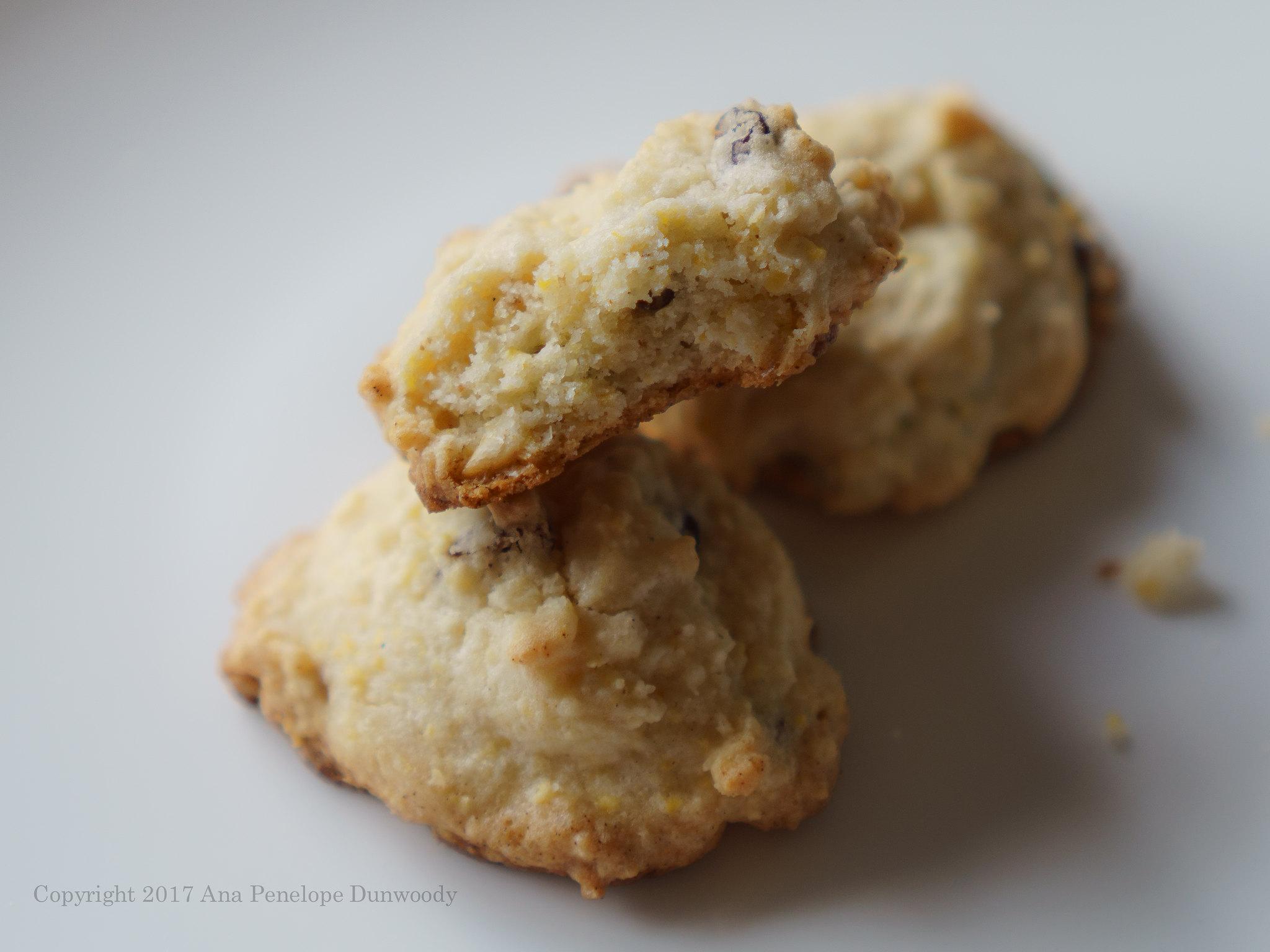 Cornmeal Cookies #2