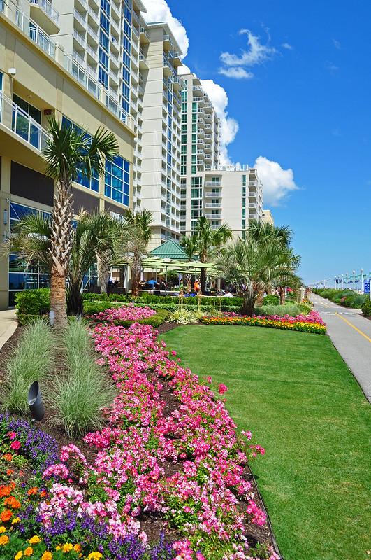 Oceanfront Landscaping (4)