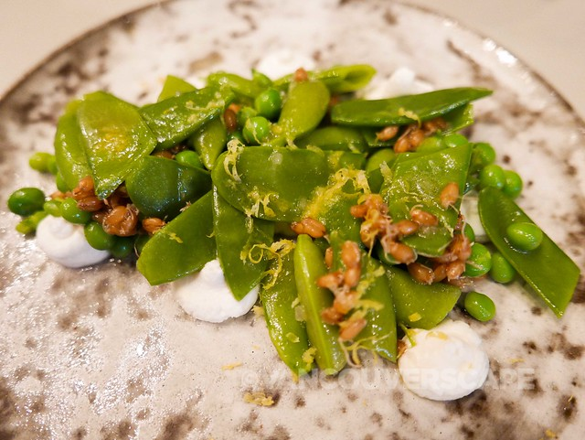 Grapes and Soda: Summer peas, goat yogurt, sprouted wheat berries, lemon zest