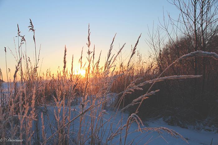 winter, Yyteri, Pori, sunset, beach