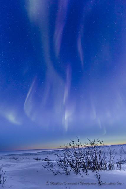 Sunrise boreal-4548