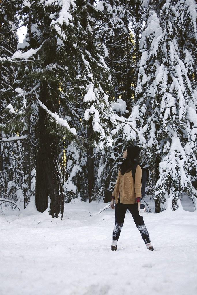 Seattle winter hike