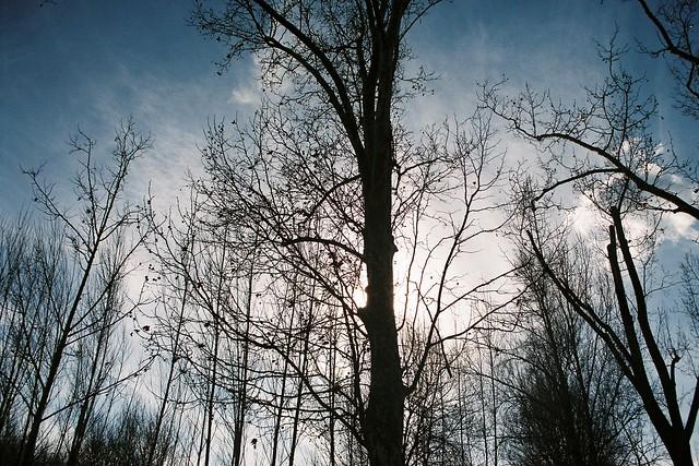 El cel d'hivern