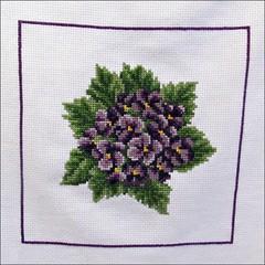 Violets Pillow Top