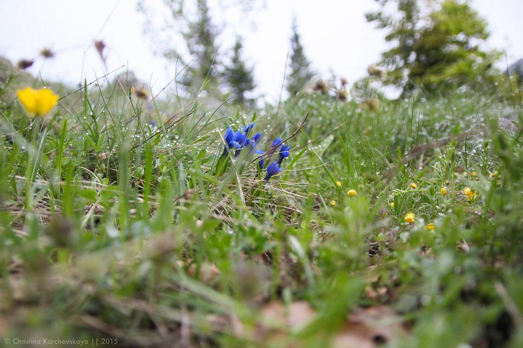 Montenegro [17]: National Park Durmitor