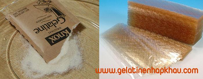 gelatin bột và gelatin lá