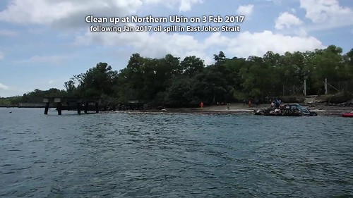 Clean up of oil at Northern Ubin, 3 Feb 2017