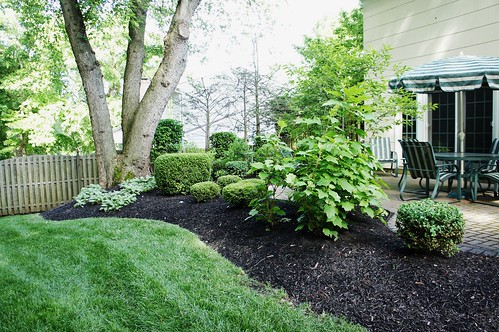 At Home:  Spring Landscaping Spruce-up (2015)
