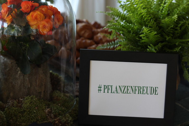 pflanzenfreude boot tour berlin lisforlois