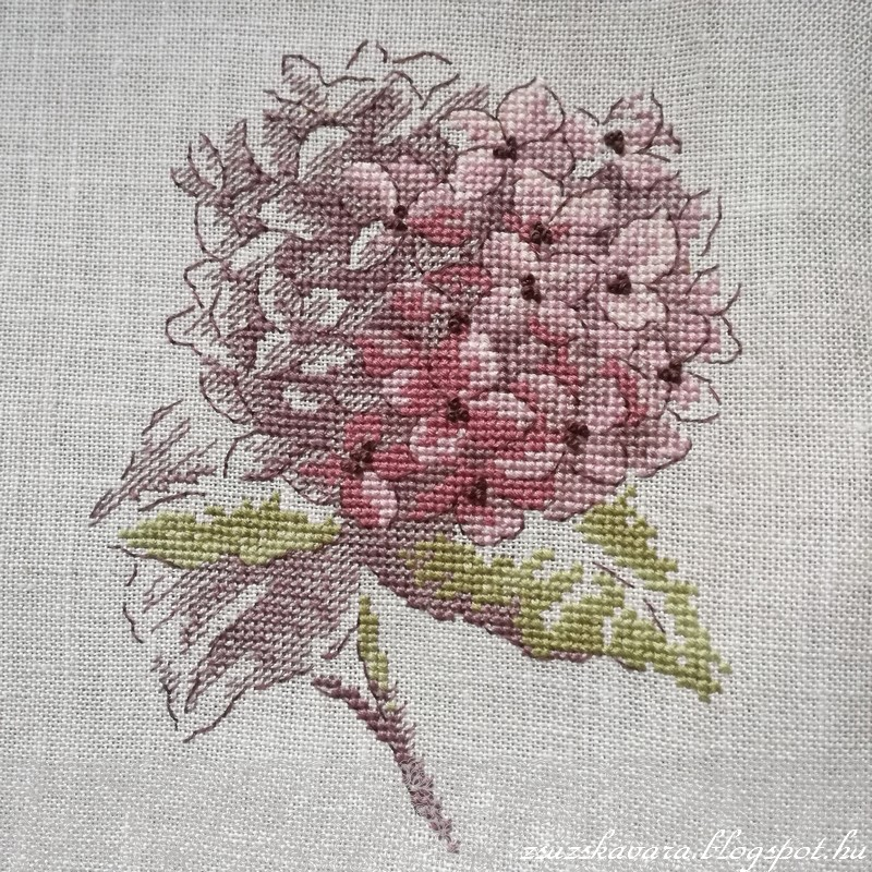 Veronique Enginger, hortensie , cross stitch, point de croix