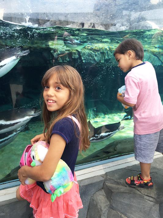 060516_aquarium20