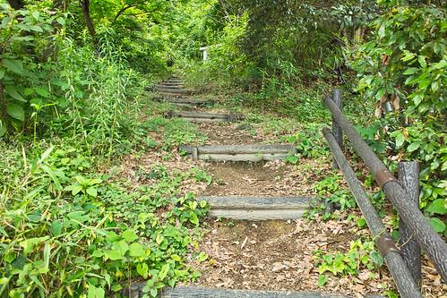 京山ソーラーグリーンパーク #6