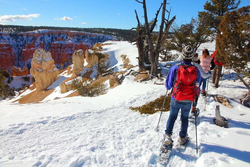 IMG_9175 Ranger-Led Snowshoe Walk