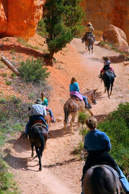 IMG_4911 Mule Ride