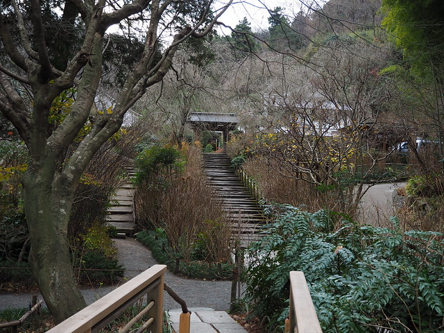 walking around Kamakura 2016.12.26 (8)