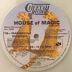 D.J. MAGIC MIKE:HOUSE OF MAGIC(LABEL SIDE-B)