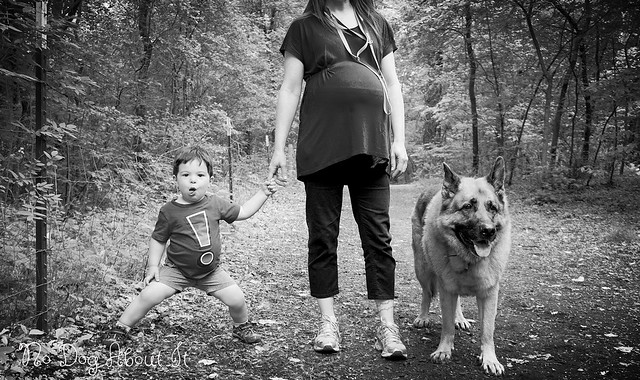 Kid, Mom and Dog