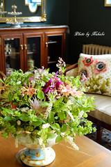 テーマ 「緑に秘められた花たち」