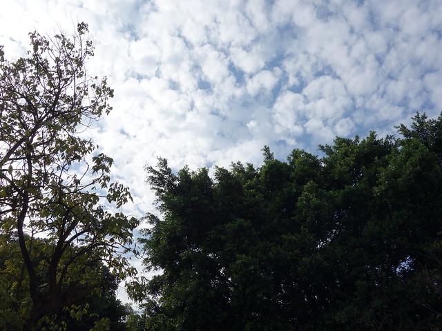 當天天氣很好 :D